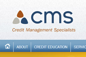 Credit Management Specialists WordPress Development